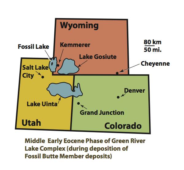 Forms  Utah Division of Risk Management